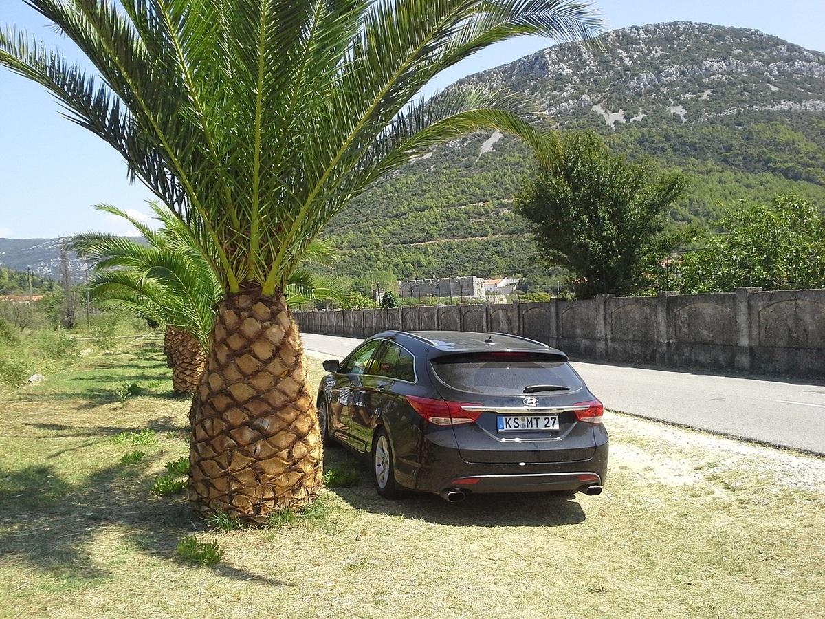 Meiner in Kroatien.